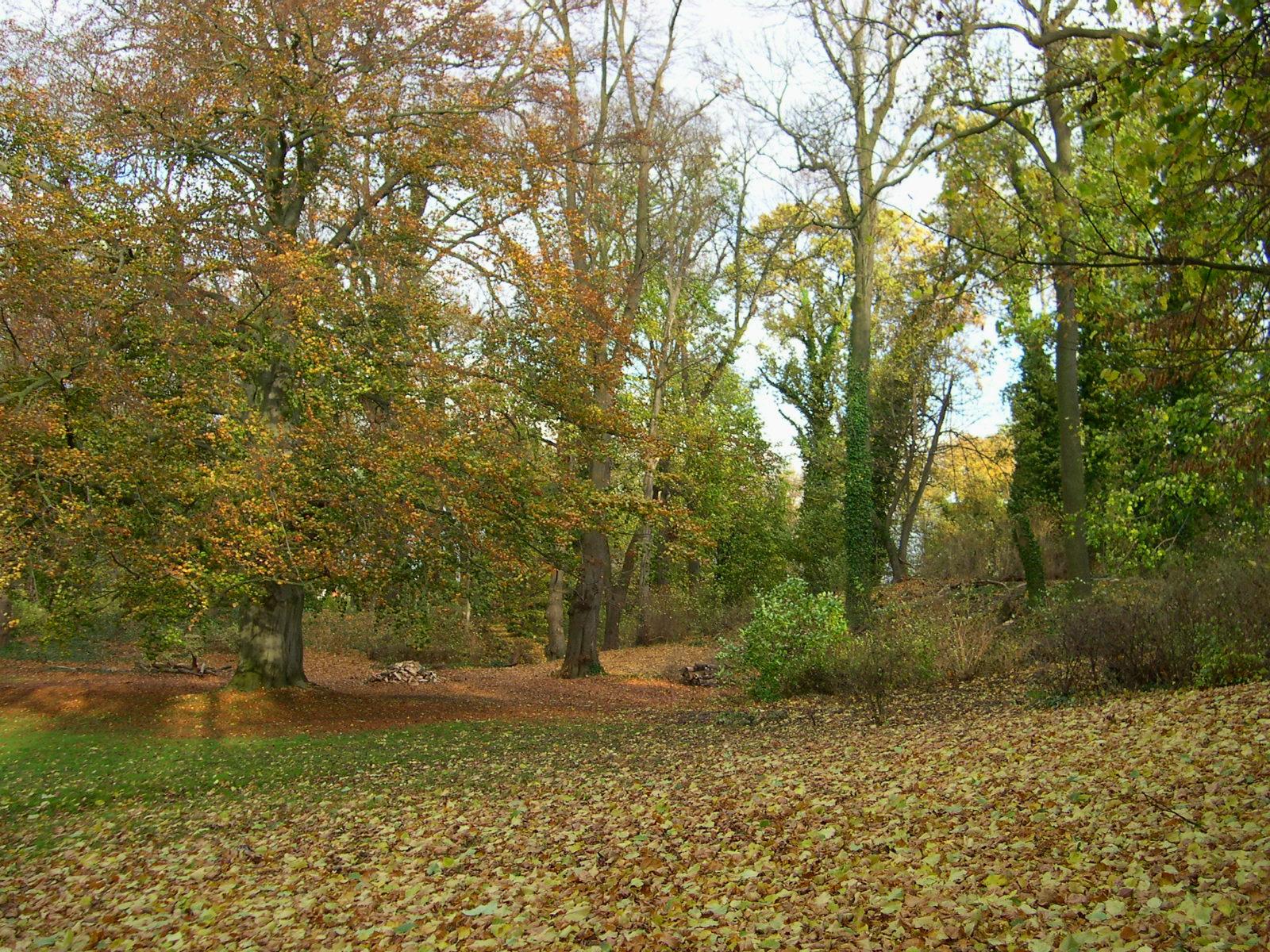 Gut Rosenthal im Herbst