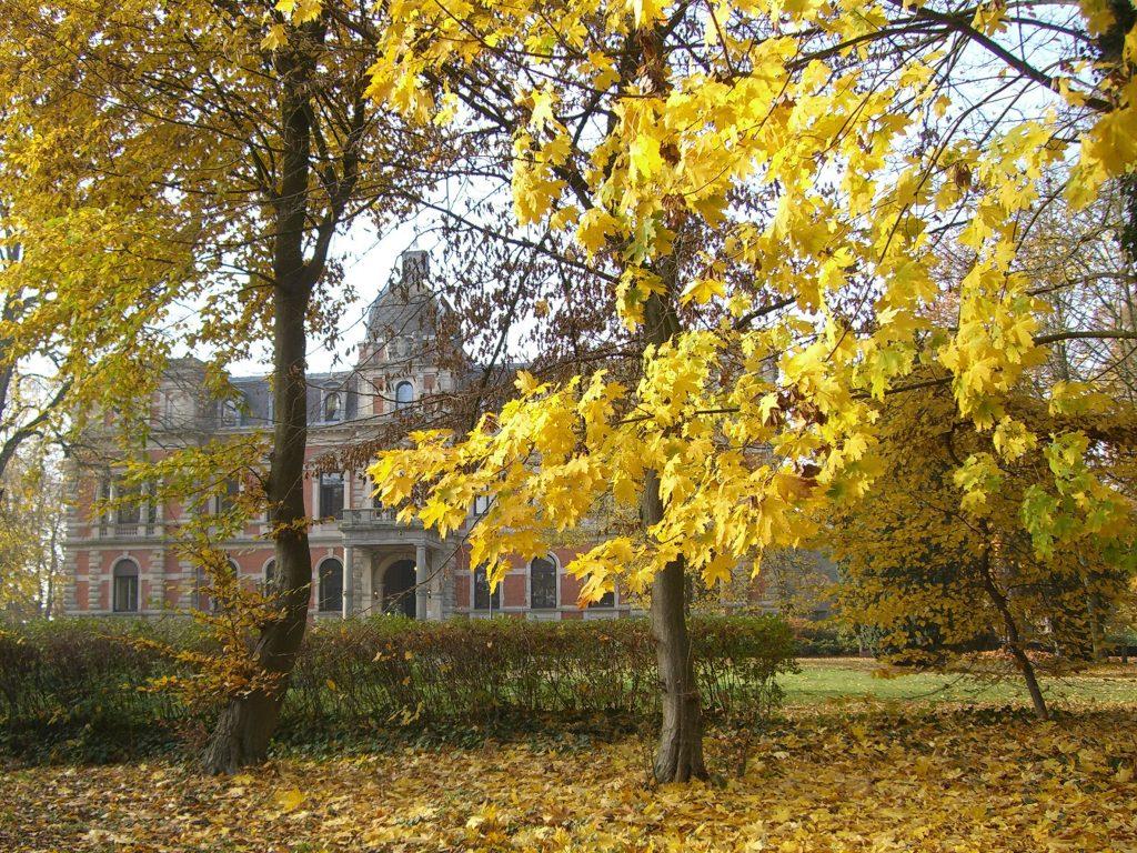 Schlosspark Etelsen im Herbst 2015