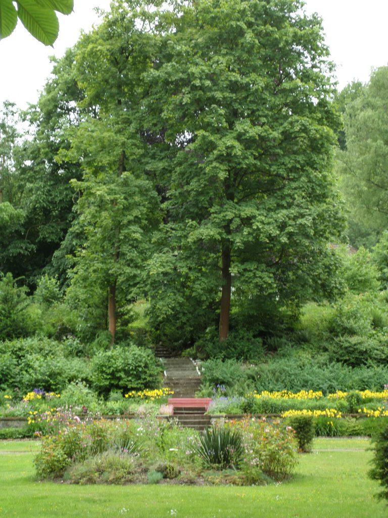 Blick auf den südlichen Gartenhang