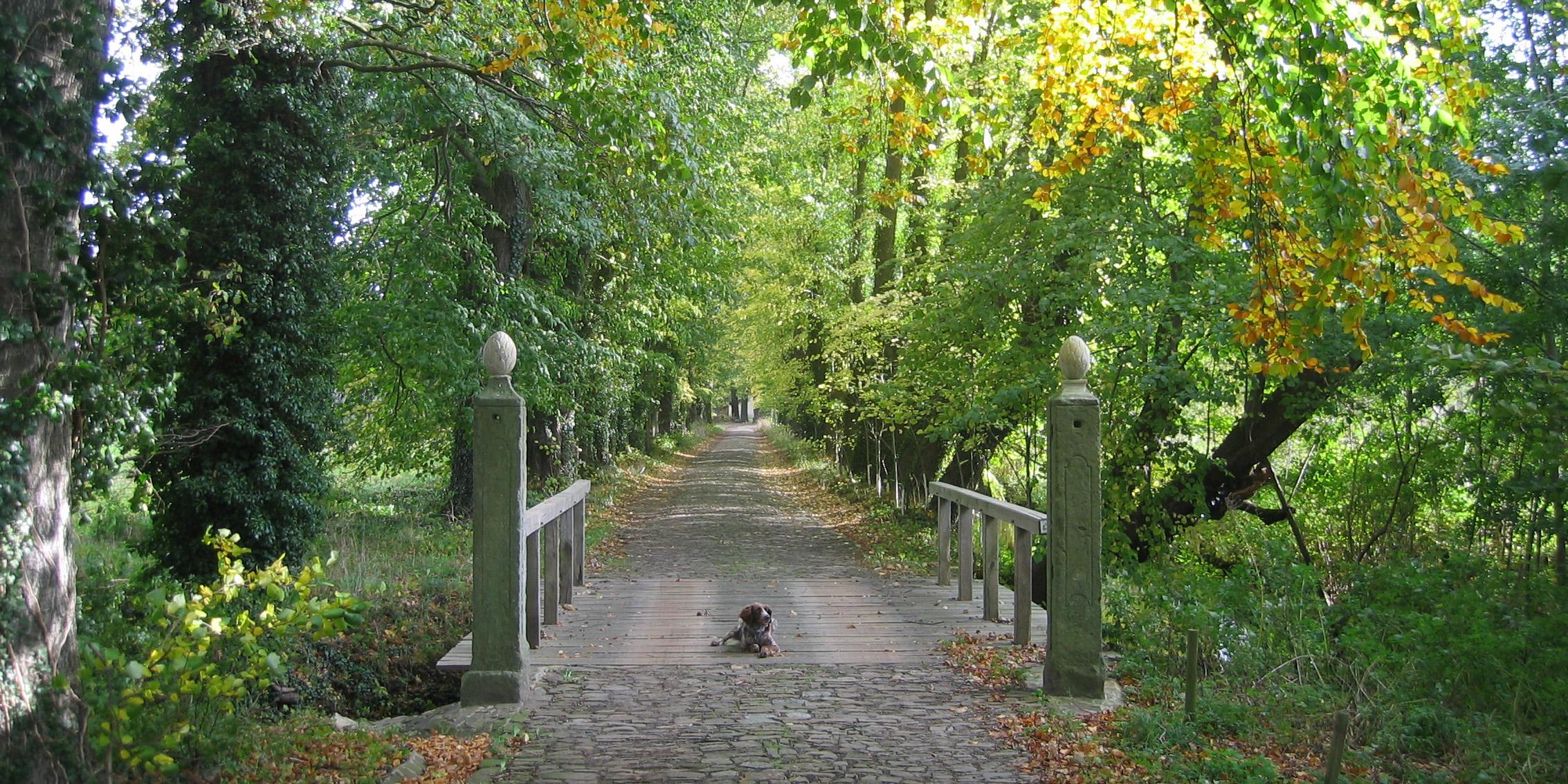 Niedersächsische Gesellschaft zur Erhaltung historischer Gärten e.V.
