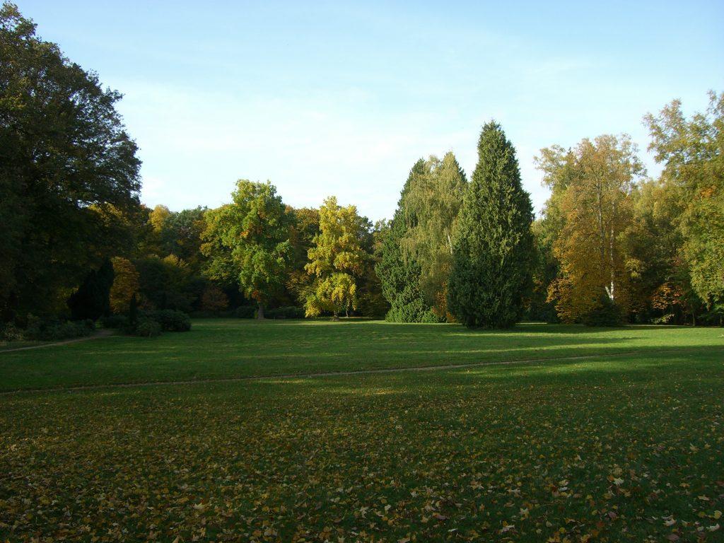 Wiese im Landschaftspark am Schloss Etelsen